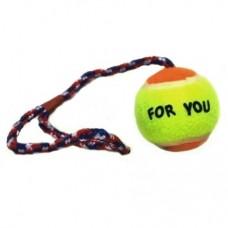Tenisový míček na laně